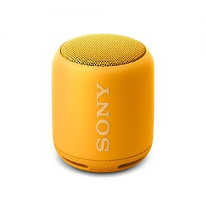 Altavoz inalámbrico Portátil Sony